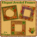 Elegant Jeweled Frames